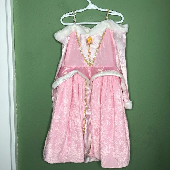 Disney Other - Disney Sleeping Beauty Costume (Long Sleeves!) 4-6